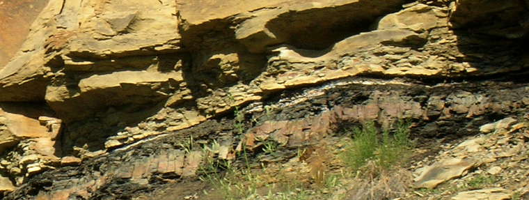 A view of the actual K-T Boundary embedded in the sandstone near Trinidad, Colorado