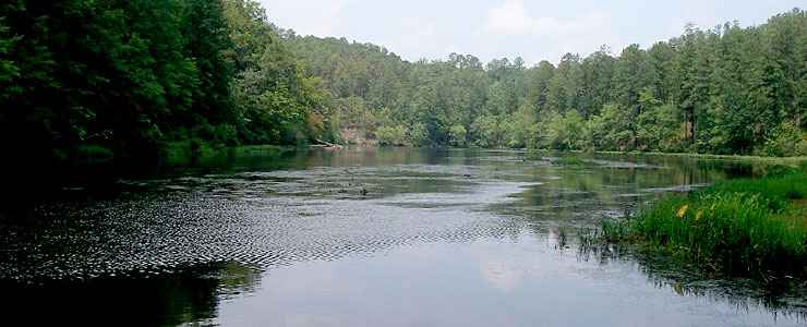 A view of Chinnabee Lake on Talladega National Forest