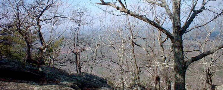 The view from Pulpit Rock in Cheaha Wilderness
