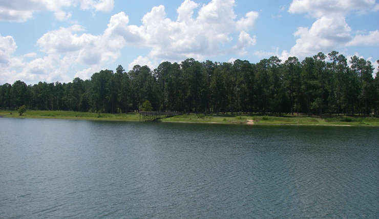 A view of Open Pond on Conecuh National Forest
