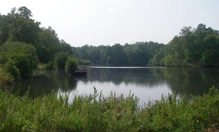 A view of Little Wills Reservoir on Talladega National Forest