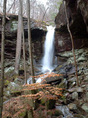 West Bee Falls in Sipsey Wilderness