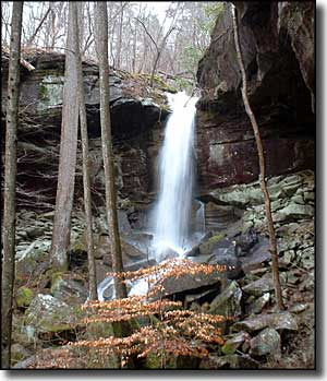 West Bee Falls, Sipsey Wilderness