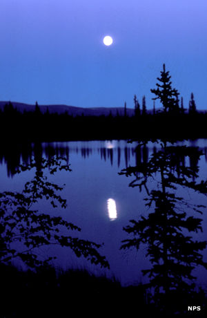 Moonlight over Kobuk Valley
