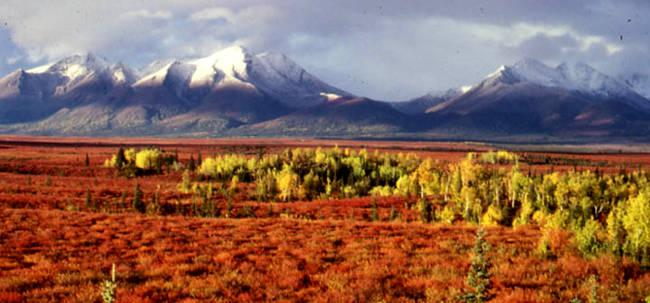 Kobuk Valley Wilderness