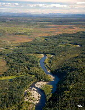 Aerial view of Kanuti National Wildlife Refuge