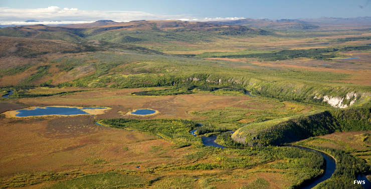Aerial view of wetlands at Kanuti National Wildlife Refuge