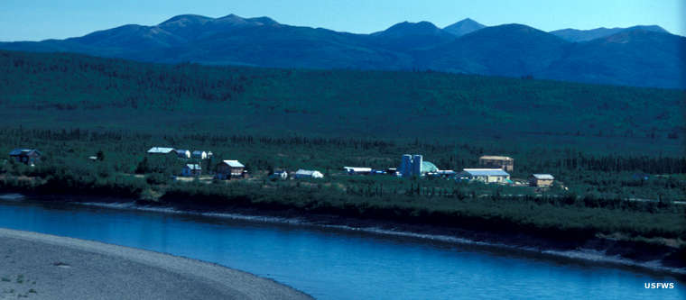 The town of Bettles on the Koyukuk River, Kanuti National Wildlife Refuge