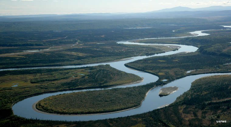Aerial view of the Kanuti River