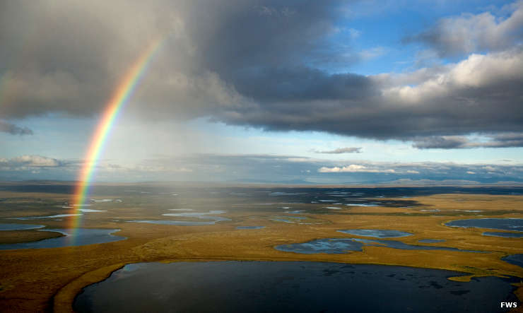 Rainbow over wetlands at Selawik National Wildlife Refuge