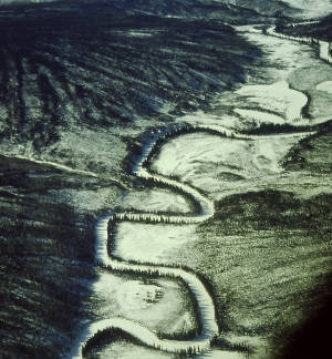 Meanders of the Salmon River