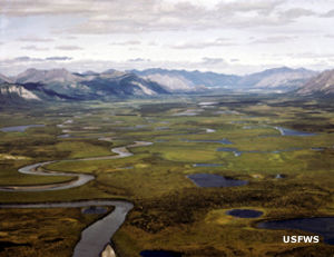 The Sheenjek River on Arctic National Wildlife Refuge