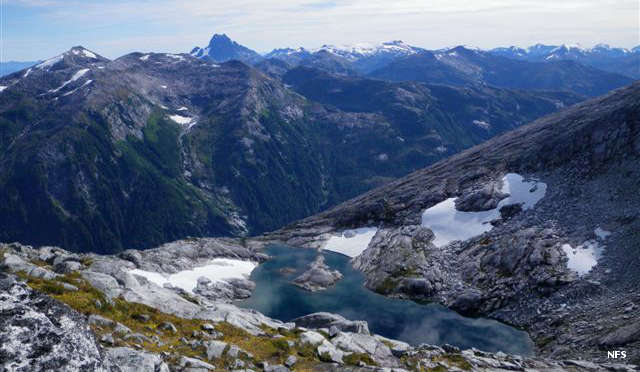 The alpine area in South Baranof Wilderness