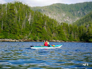 Kayaking to South Baranof Wilderness