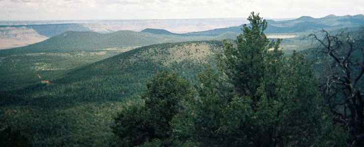 The view south from Mount Trumbull Wilderness
