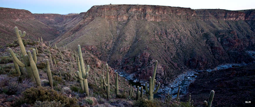 Another view down into the canyon at Agua Fria National Monument