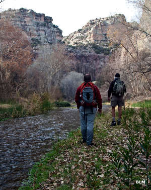 Hiking along Aravaipa Creek