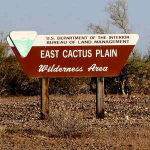 East Cactus Plain Wilderness sign