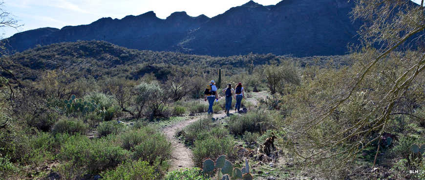 Hikers on the trail to Burro Flats