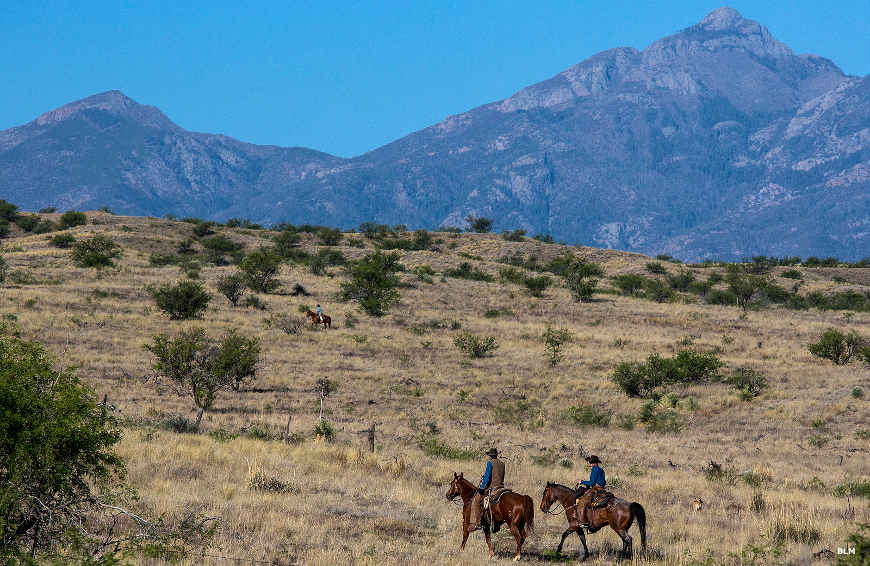 Horseback riders on Empire Ranch, part of Las Cienegas National Conservation Area