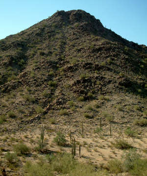 A typical view in North Maricopa Mountains Wilderness