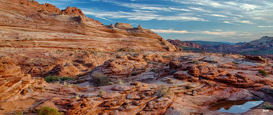 A view across the striped sandstone landscape in the South Coyote Buttes area