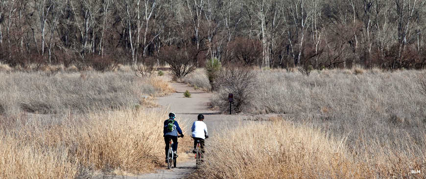Bikers riding a trail in San Pedro Riparian National Conservation Area