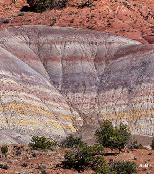 A view of the Chinle Formation: multicolored layers of sandstone