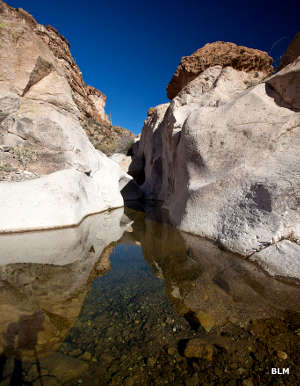 A pool of water in a cleft in the rock in White Canyon Wilderness