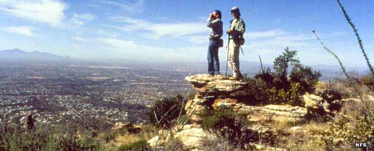 Overlooking Tucson from high in the Santa Catalina Mountains