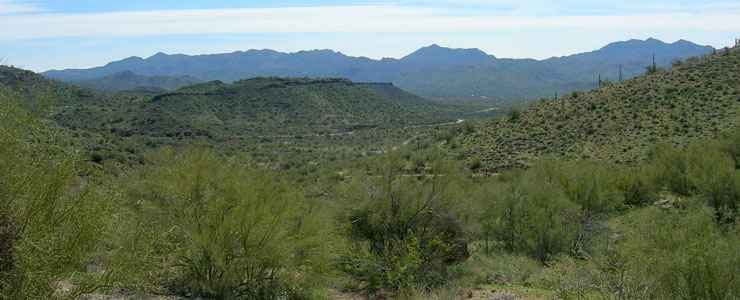 A view in the Bagdad area on Prescott National Forest