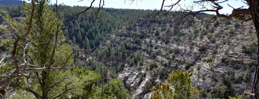 A view along the Mogollon Rim near Walnut Canyon