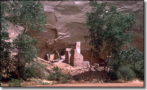 Ancestral Puebloan ruins on the canyon floor