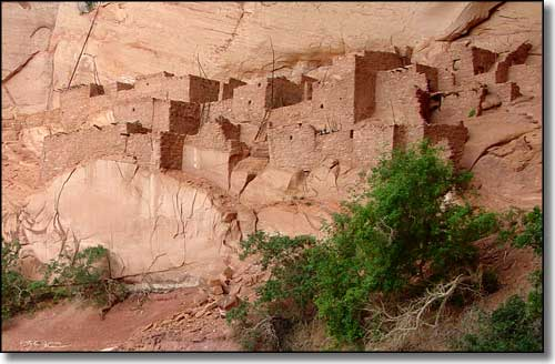 Betatakin Ruins at Navajo National Monument