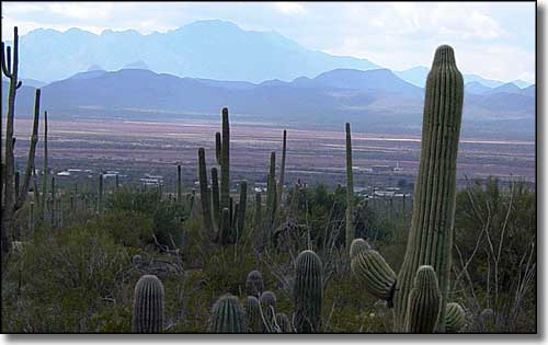 Kitt Peak to the west of the Tucson Mountains section of Saguaro National Park