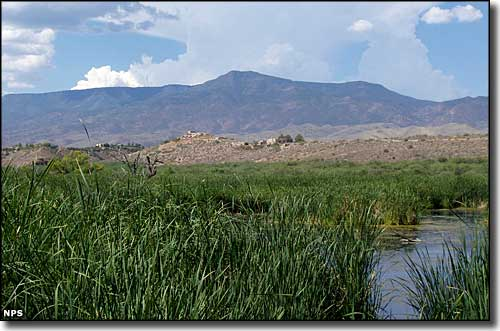 Tavasci Marsh at Tuzigoot National Monument