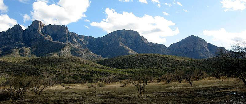 Catalina State Park, Oro Valley, Arizona