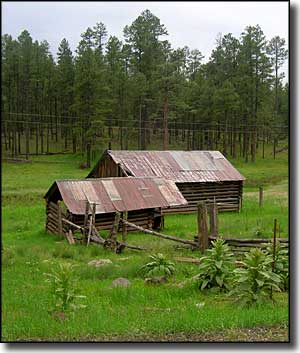 An old homestead along the Coronado Trail Scenic Byway