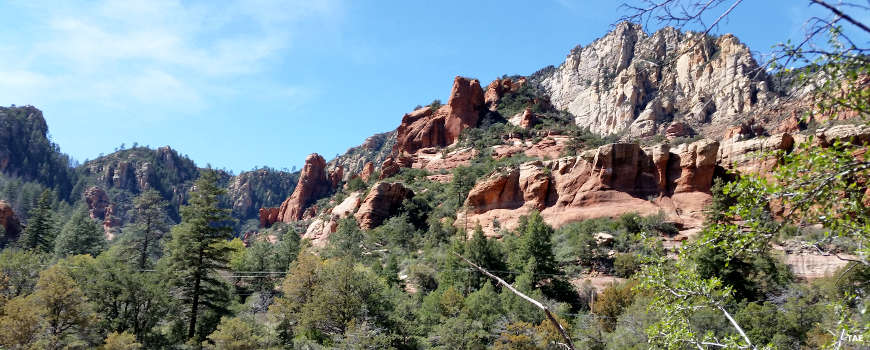 Red and white rocks rising above the Sedona-Oak Creek Canyon Scenic Road