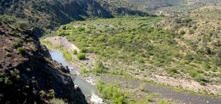 The Verde Wild and Scenic River runs along the eastern boundary of Cedar Bench Wilderness