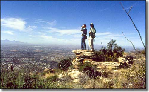 Hikers on Pusch Ridge Wilderness enjoying the view over Tucson