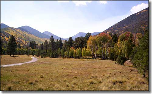 Lockett Meadow, in the Inner Basin of Kachina Peaks Wilderness