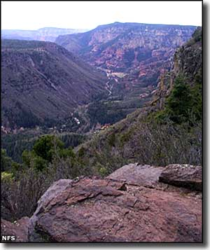A trail above Oak Creek Canyon, on the edge of Red Rock-Secret Mountain Wilderness