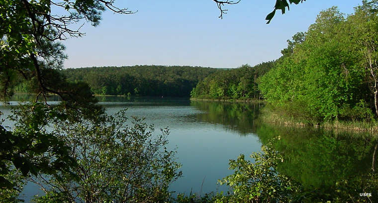 Cedar Lake on Ouachita National Forest