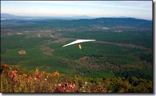 Hang gliders above the Talimena Scenic Drive