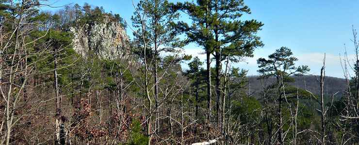 Flatside Pinnacle from the Ouachita National Recreation Trail