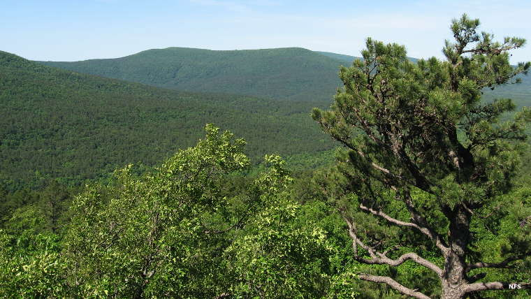 A view at Poteau Mountain Wilderness