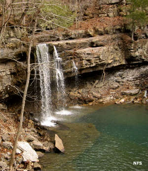 One of the Twin Falls in Richland Creek Wilderness