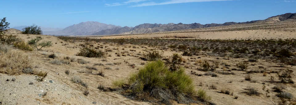 Typical view in the California Desert Conservation Area