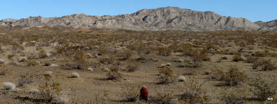More of the Chemehuevi Mountain Range